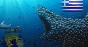 shark-greece